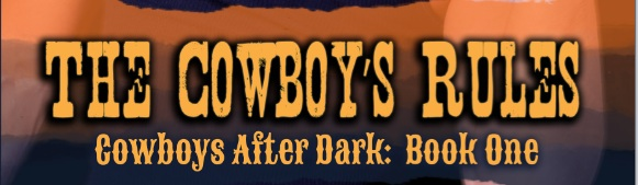 Cowboy Banner