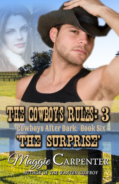 CowboyRules3eBookSMALL
