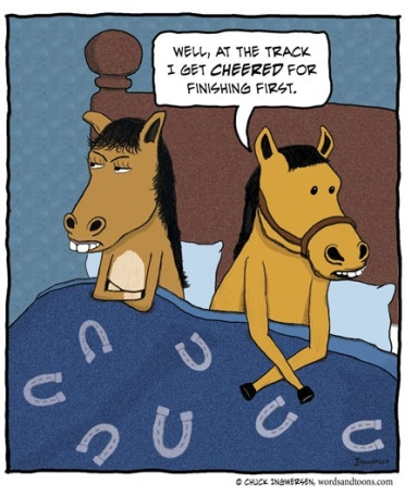 horse-bed